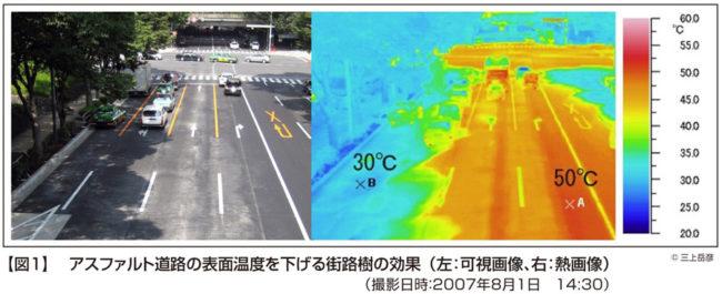 地表面の温度